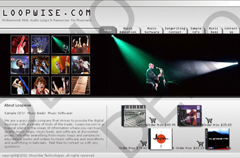 Loop Wise Music Store Web Design